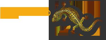 Geckoweb